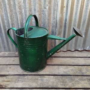Vintage Green 2 Gallon Water Can Planter