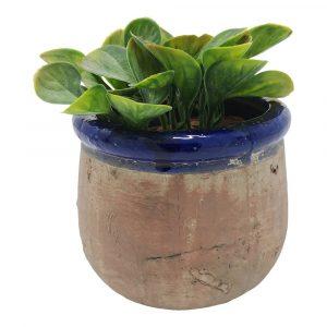 Rustic Azul Blue Plant Pot