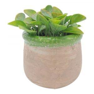 Rustic Verde Plant Pot