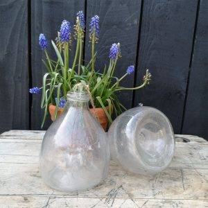 Vintage Glass Wasp Catchers