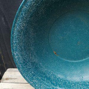 Teal Speckled Enamel Bowl